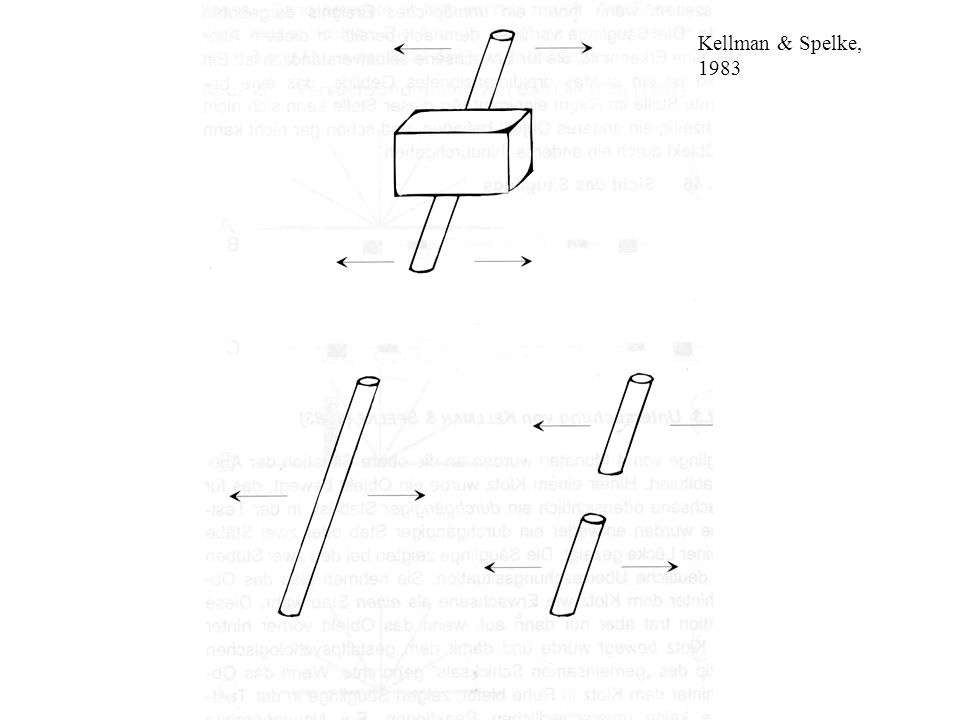 Kellman & Spelke, 1983