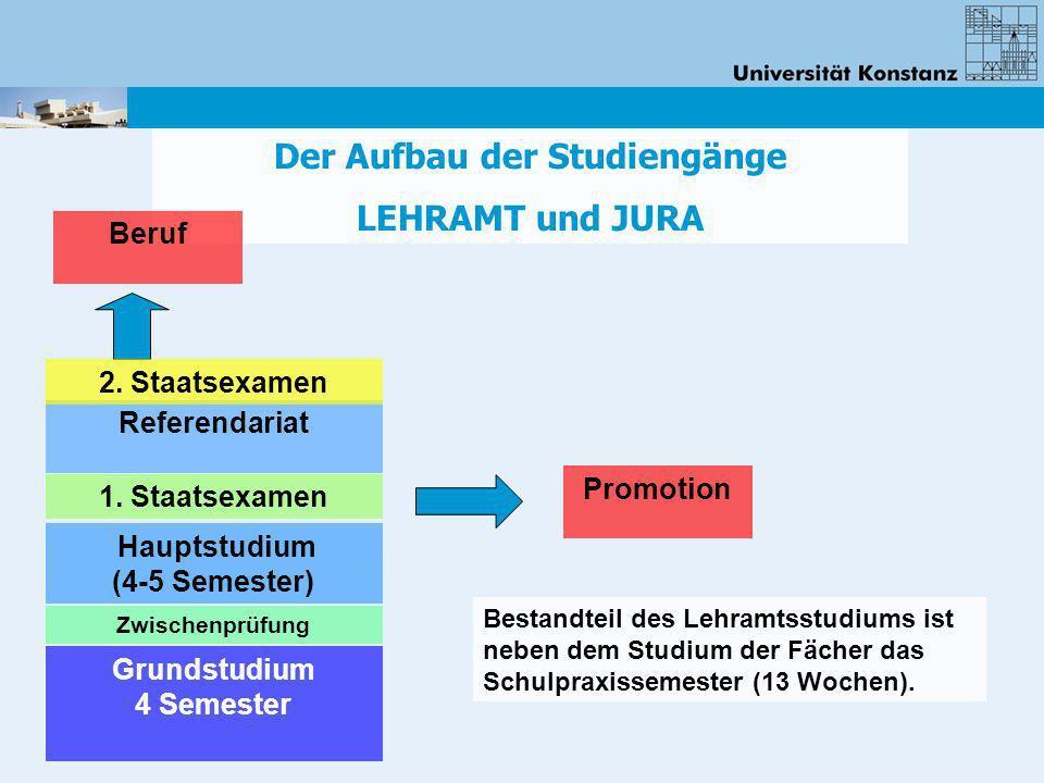 Der Aufbau der Studiengänge