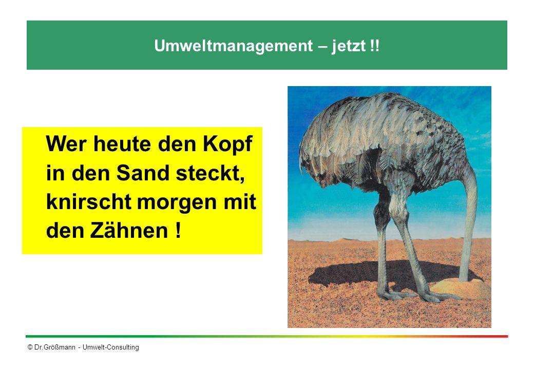 Umweltmanagement – jetzt !!