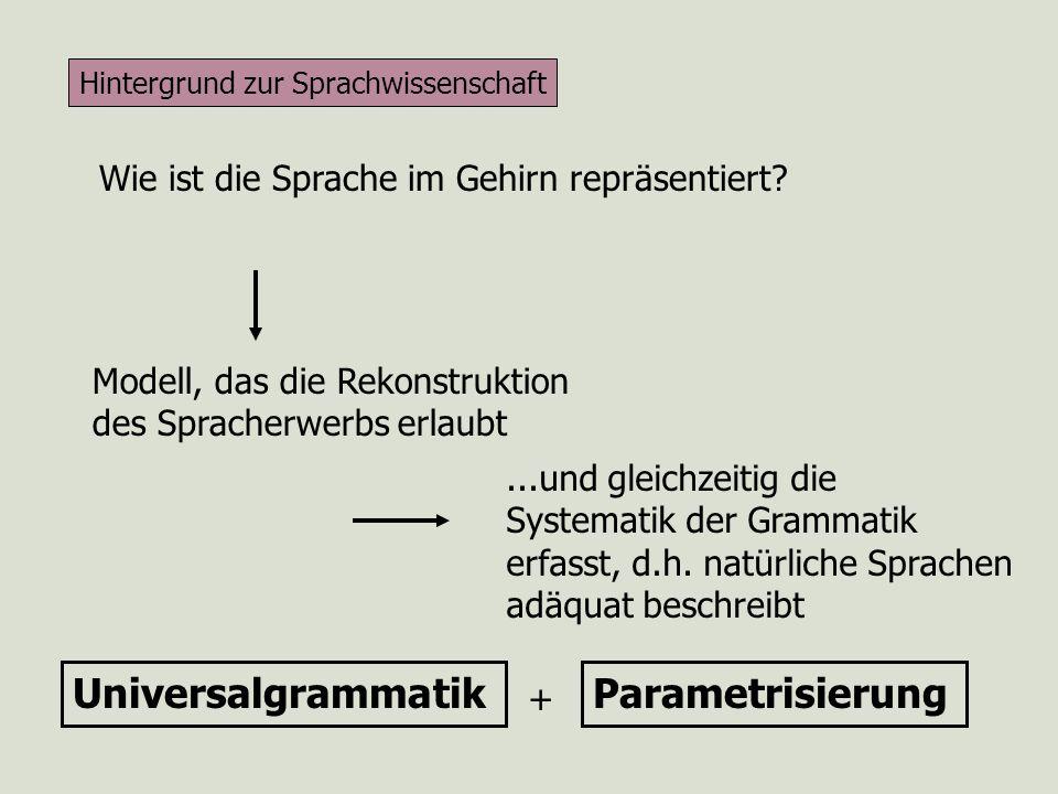 Universalgrammatik Parametrisierung