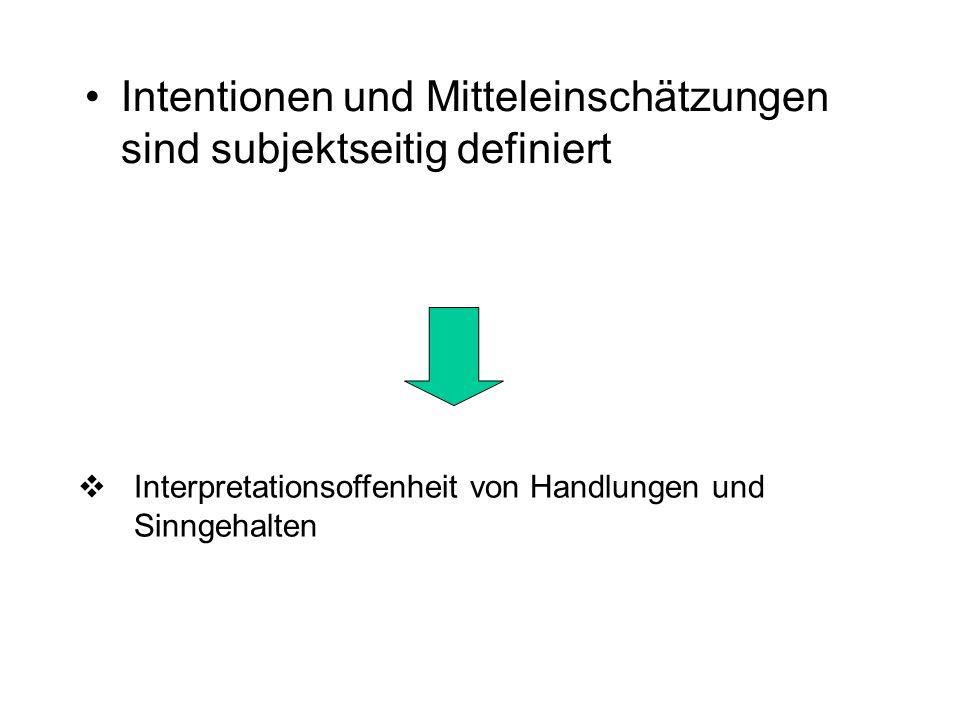 Intentionen und Mitteleinschätzungen sind subjektseitig definiert