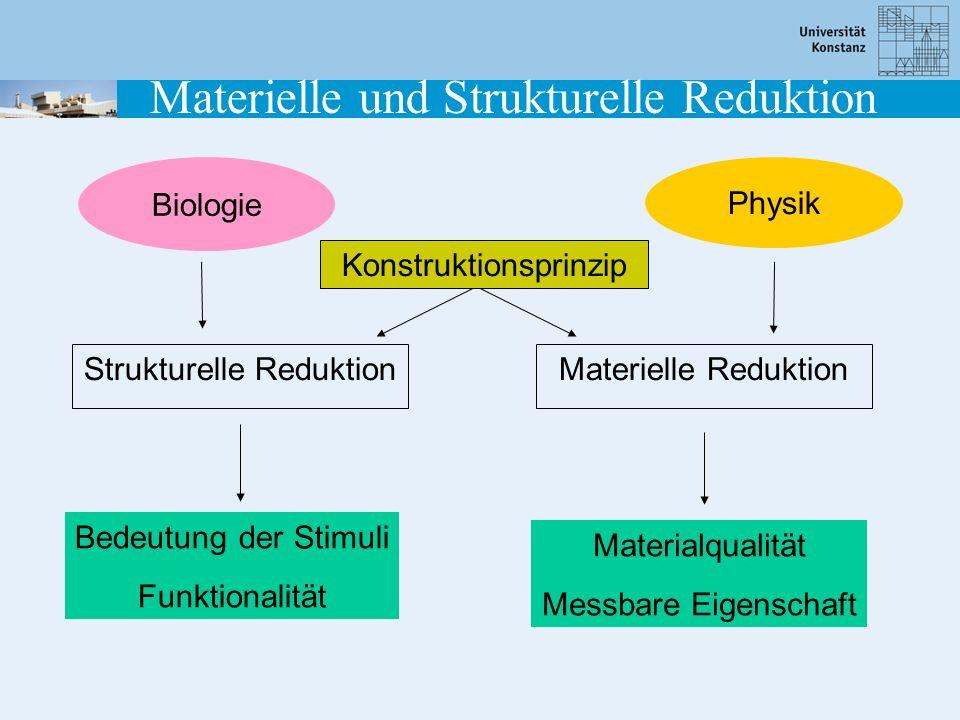 Materielle und Strukturelle Reduktion
