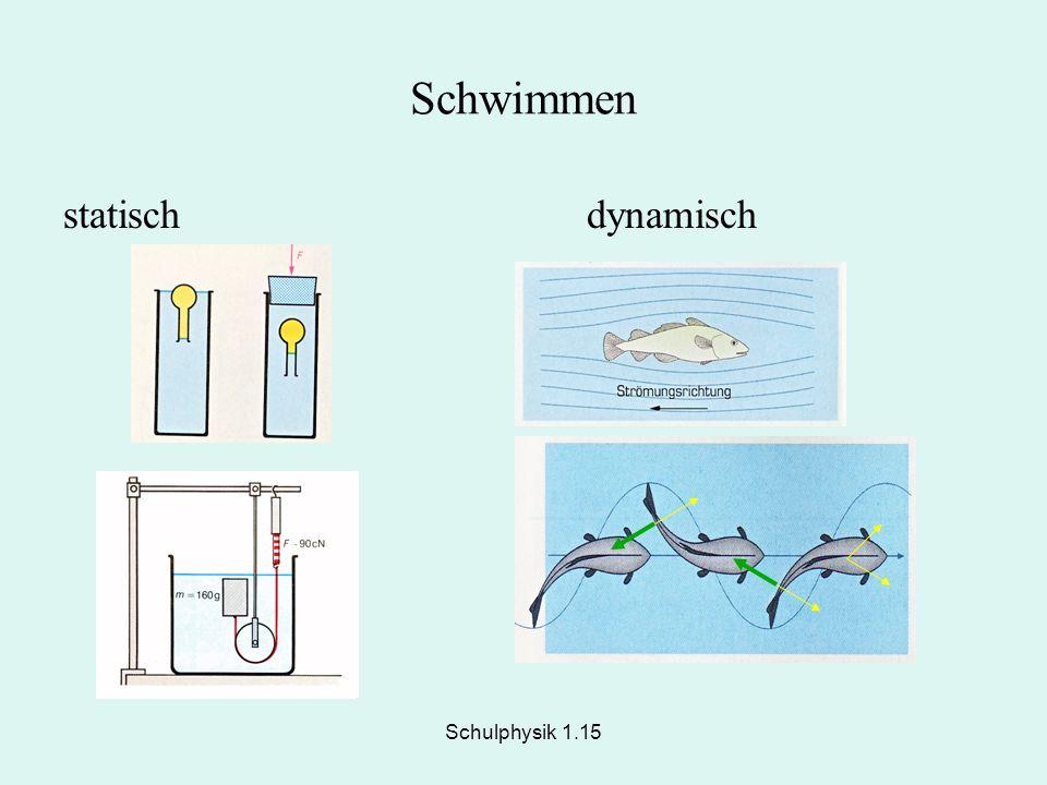 Schwimmen statisch dynamisch Schulphysik 1.15