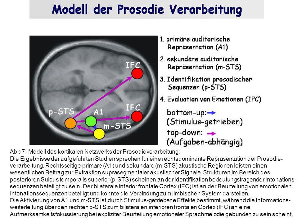 Abb 7: Modell des kortikalen Netzwerks der Prosodieverarbeitung: