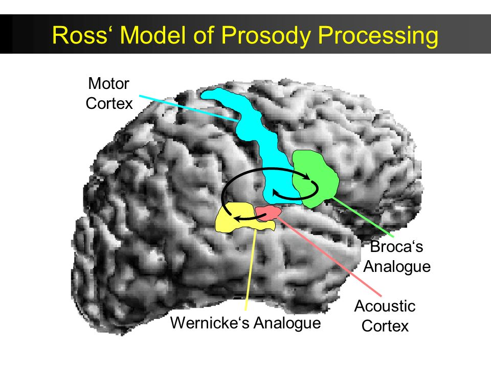 Ross' Model of Prosody Processing