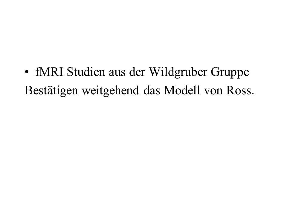 fMRI Studien aus der Wildgruber Gruppe