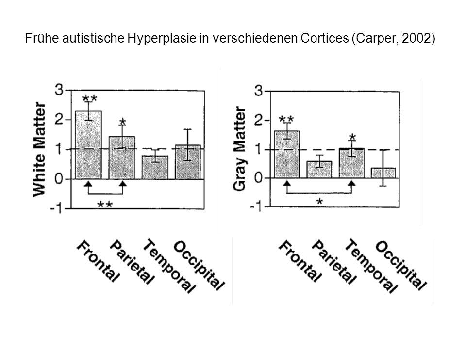 Frühe autistische Hyperplasie in verschiedenen Cortices (Carper, 2002)