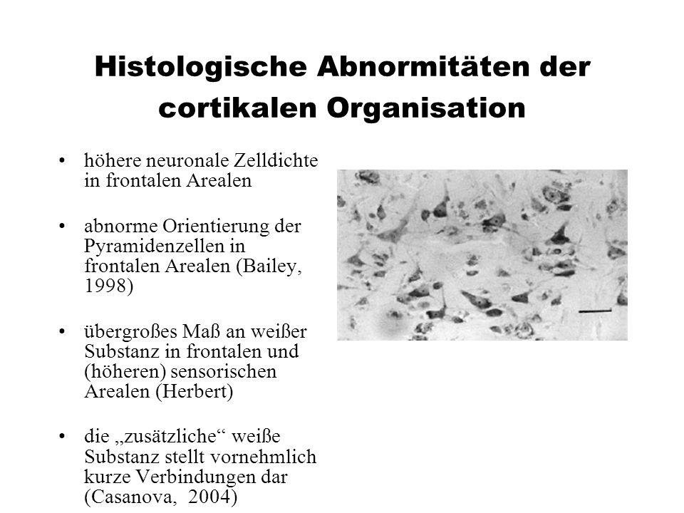 Histologische Abnormitäten der cortikalen Organisation