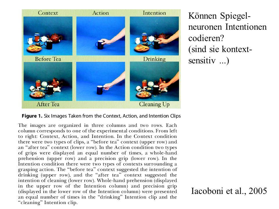 Können Spiegel- neuronen Intentionen. codieren.