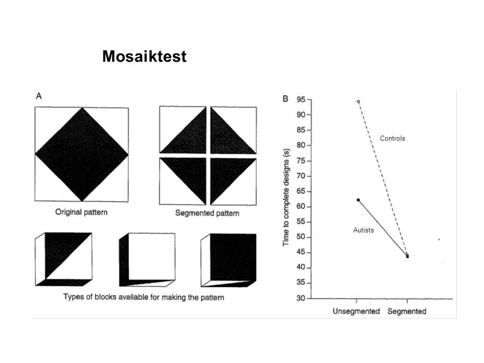 Mosaiktest Controls Autists