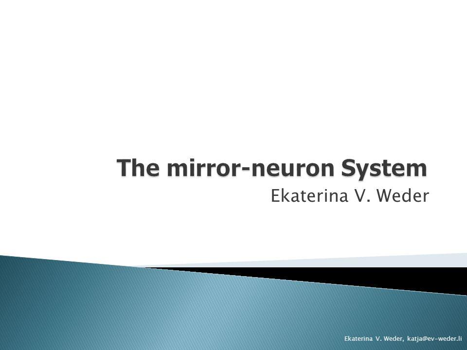 The mirror-neuron System