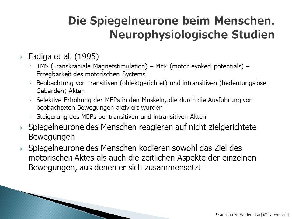 Die Spiegelneurone beim Menschen. Neurophysiologische Studien