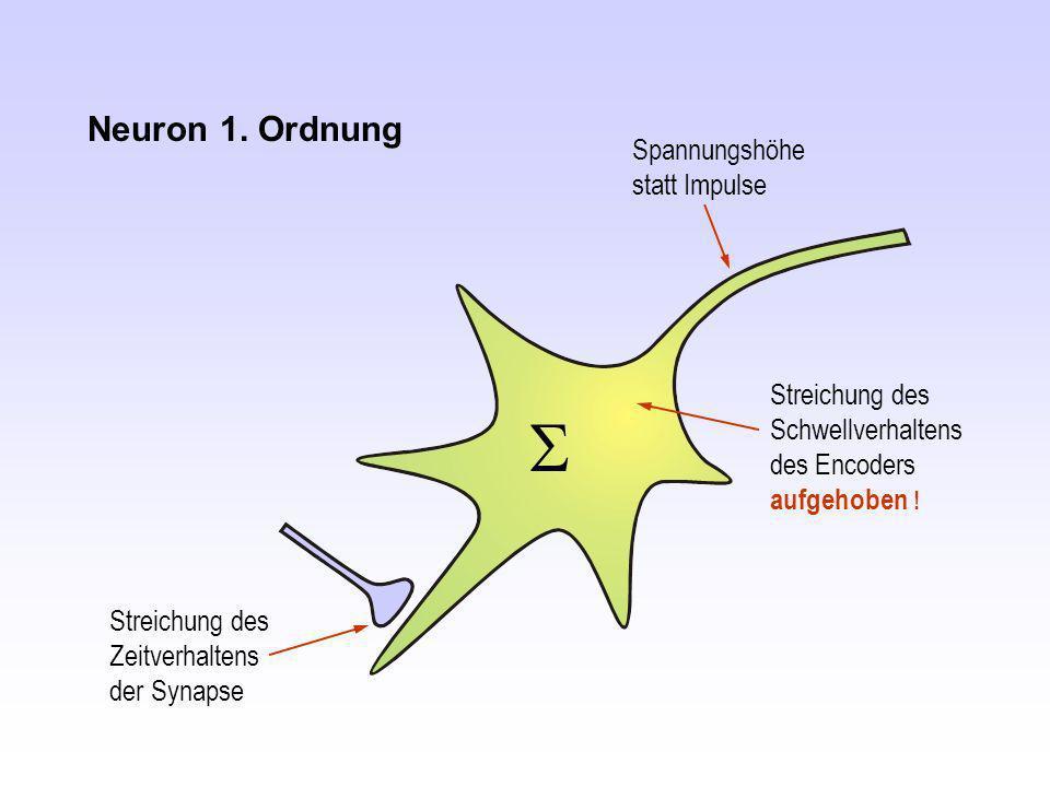 S S Neuron 1. Ordnung Spannungshöhe statt Impulse