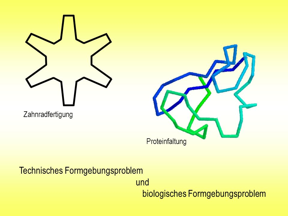 Technisches Formgebungsproblem und biologisches Formgebungsproblem
