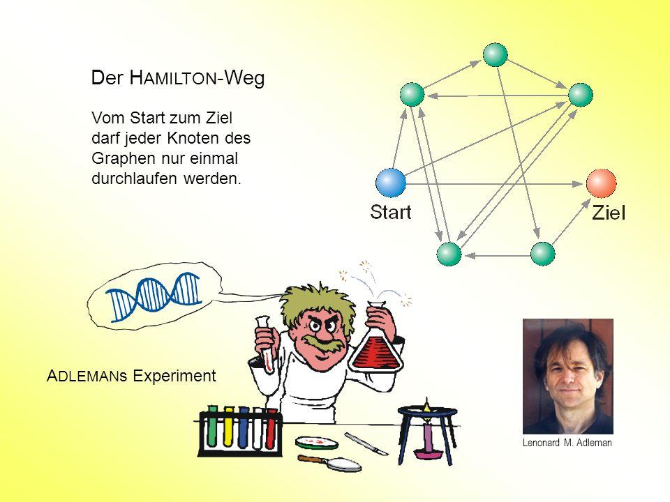 Der HAMILTON-Weg Vom Start zum Ziel darf jeder Knoten des Graphen nur einmal durchlaufen werden. Lenonard M. Adleman.