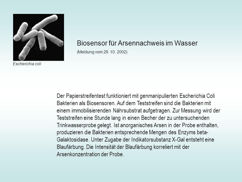 Biosensor für Arsennachweis im Wasser