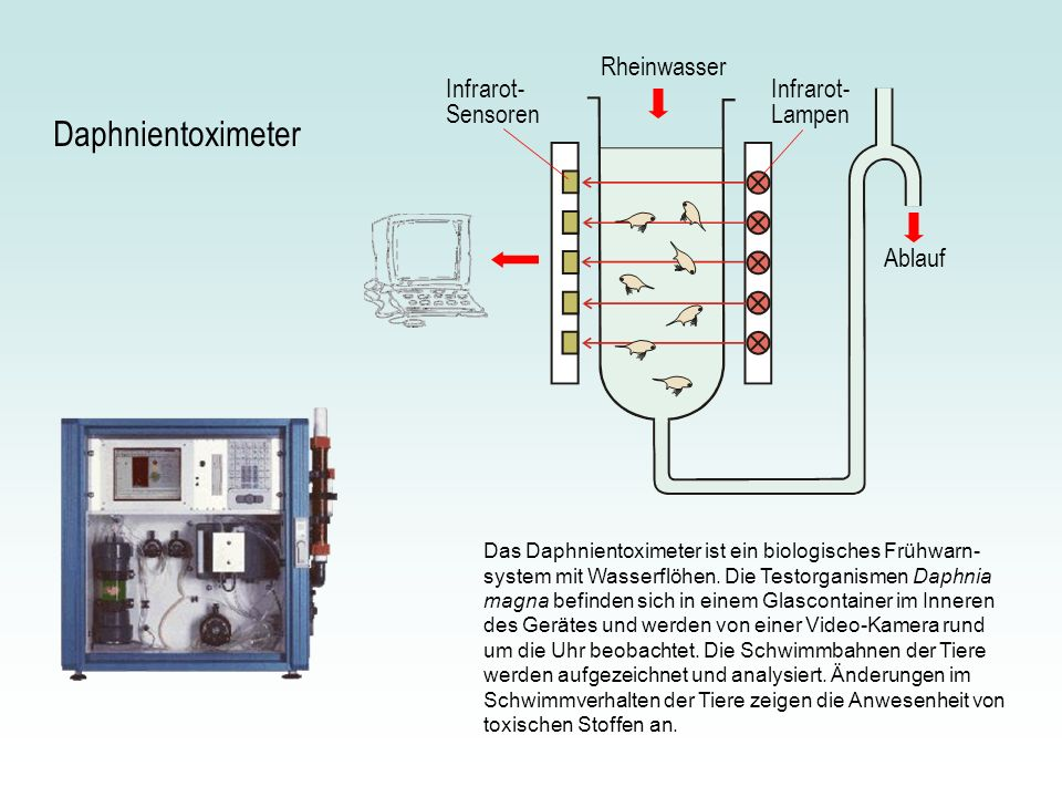 Daphnientoximeter Rheinwasser Infrarot-Sensoren Infrarot-Lampen Ablauf