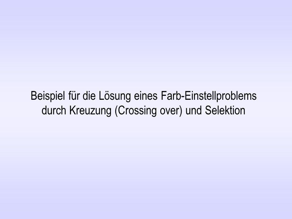 Beispiel für die Lösung eines Farb-Einstellproblems durch Kreuzung (Crossing over) und Selektion