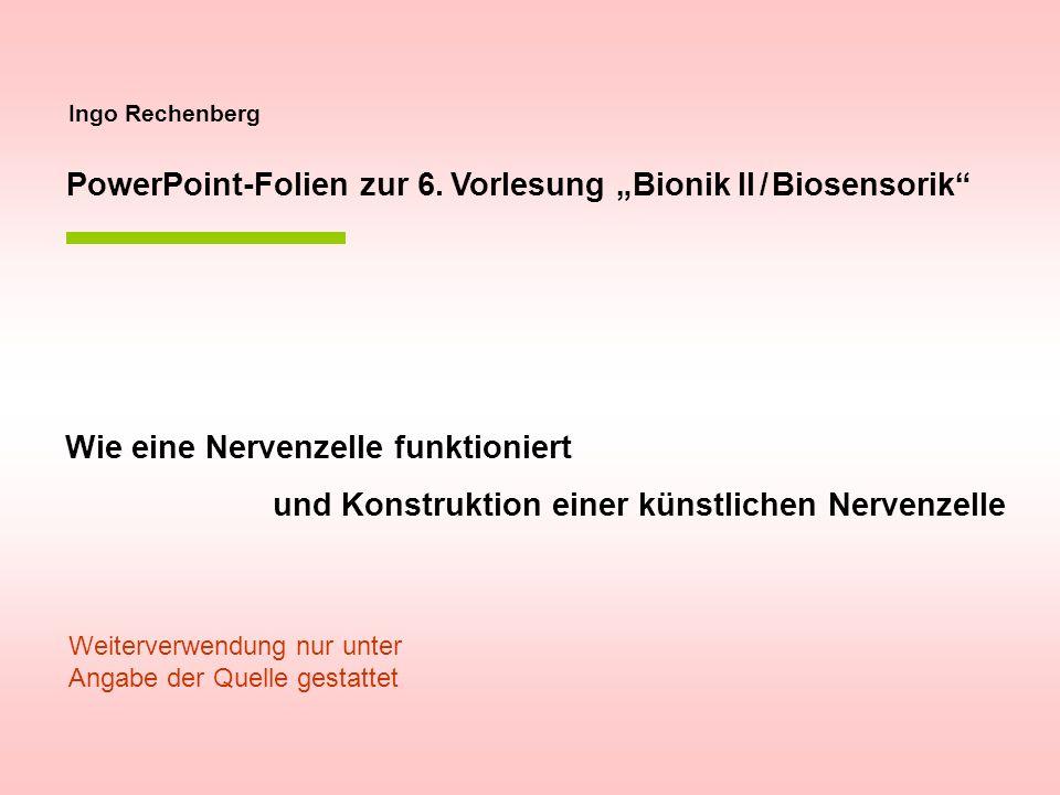 """PowerPoint-Folien zur 6. Vorlesung """"Bionik II / Biosensorik"""