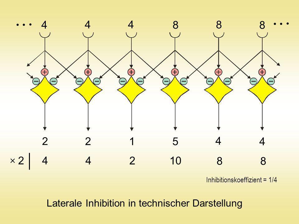 4 4. 4. 8. 8. 8. 2. 2. 1. 5. 4. 4. 2.  4. 4. 2. 10. 8. 8. Inhibitionskoeffizient = 1/4.