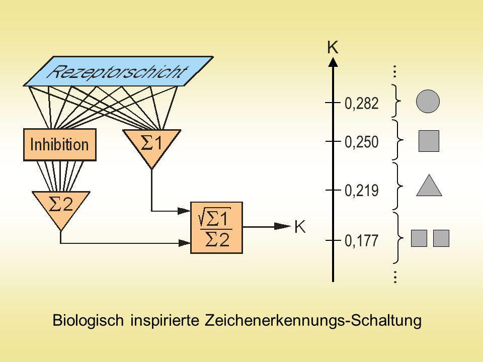 K 0,282 0,250 0,219 0,177 Biologisch inspirierte Zeichenerkennungs-Schaltung
