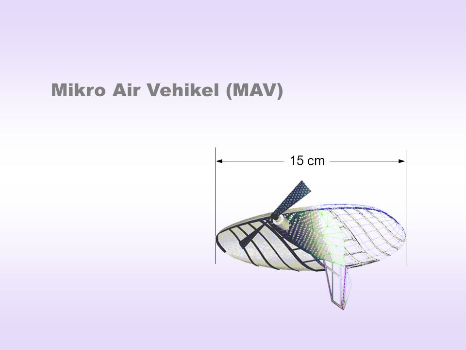 Mikro Air Vehikel (MAV)