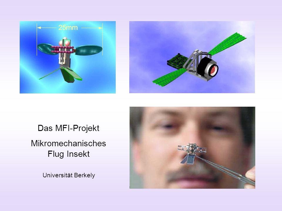 Mikromechanisches Flug Insekt