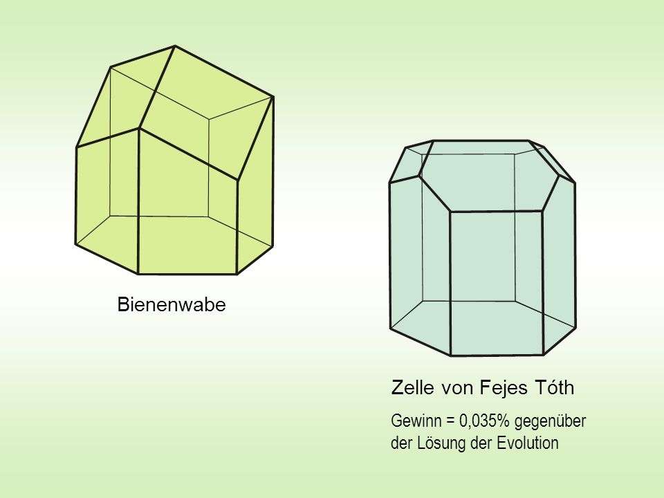 Bienenwabe Zelle von Fejes Tóth
