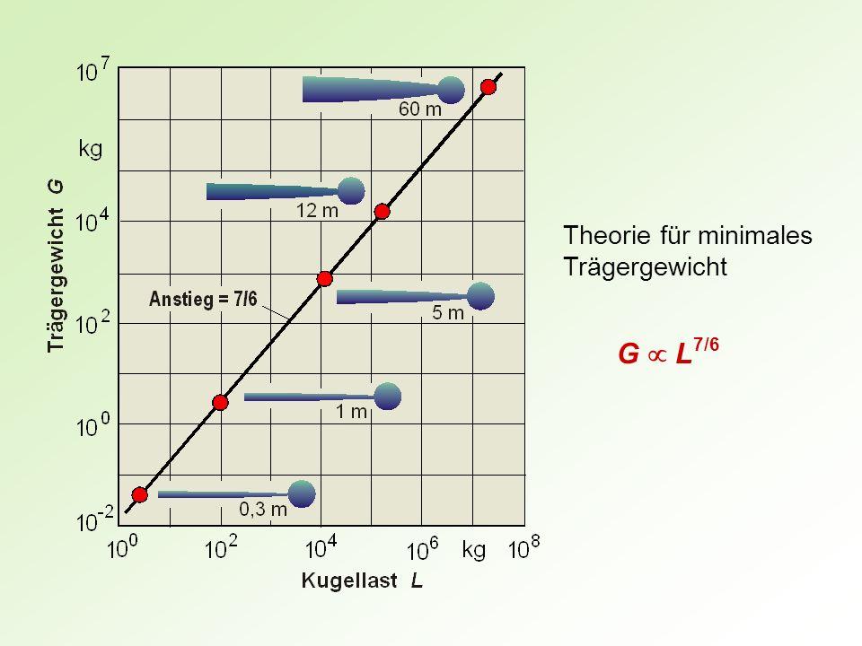 Theorie für minimales Trägergewicht