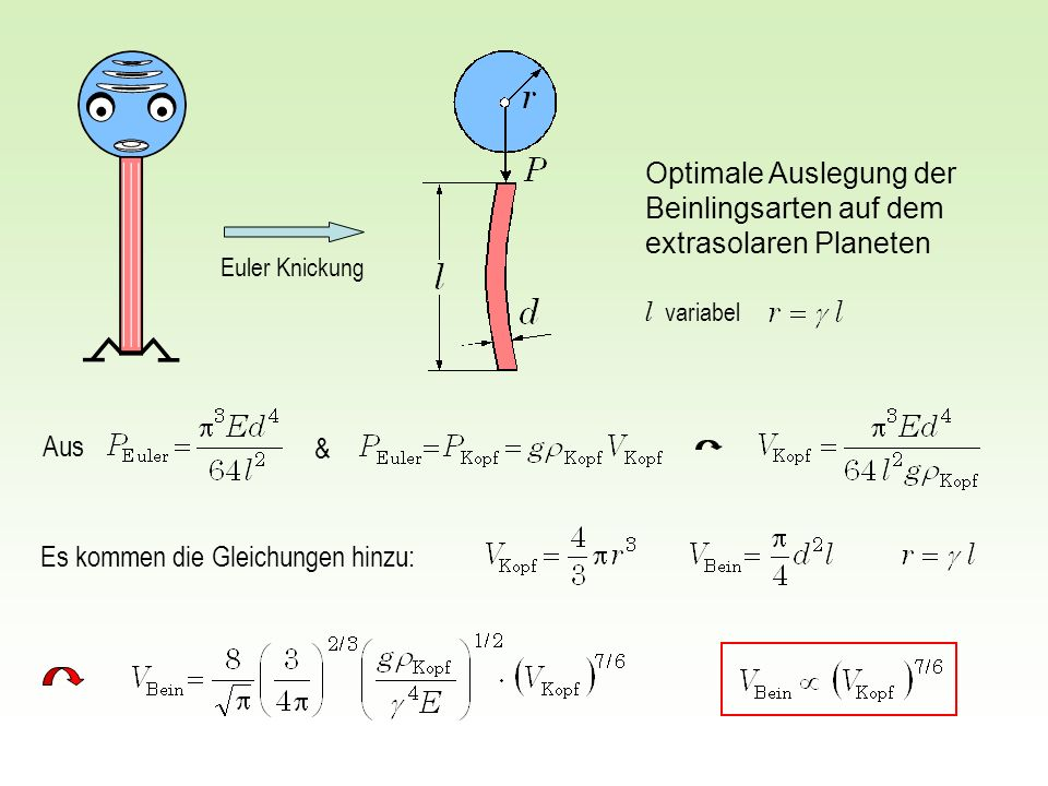 Optimale Auslegung der Beinlingsarten auf dem extrasolaren Planeten