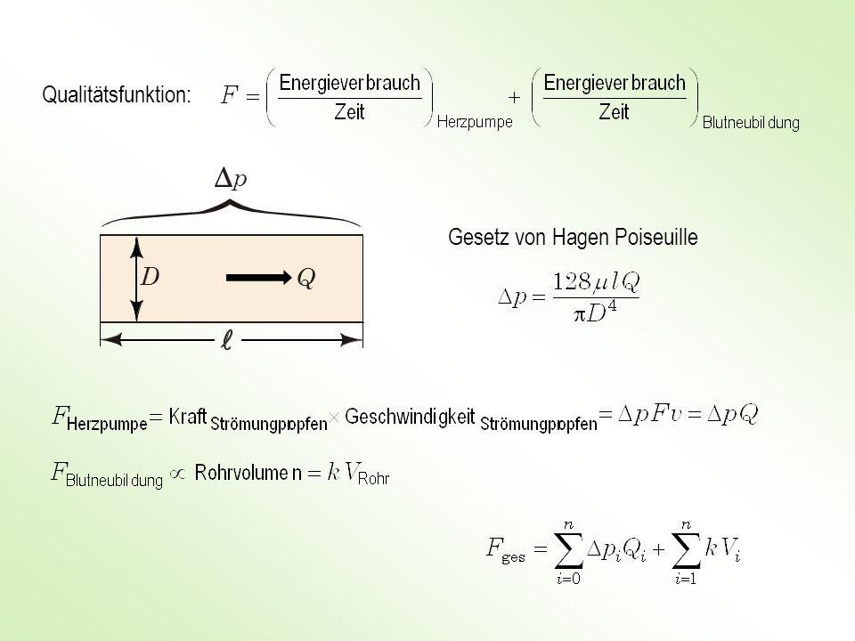 Qualitätsfunktion: p Gesetz von Hagen Poiseuille D Q