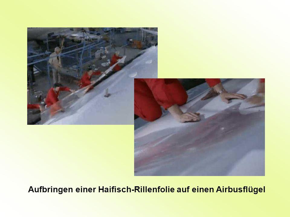 Aufbringen einer Haifisch-Rillenfolie auf einen Airbusflügel