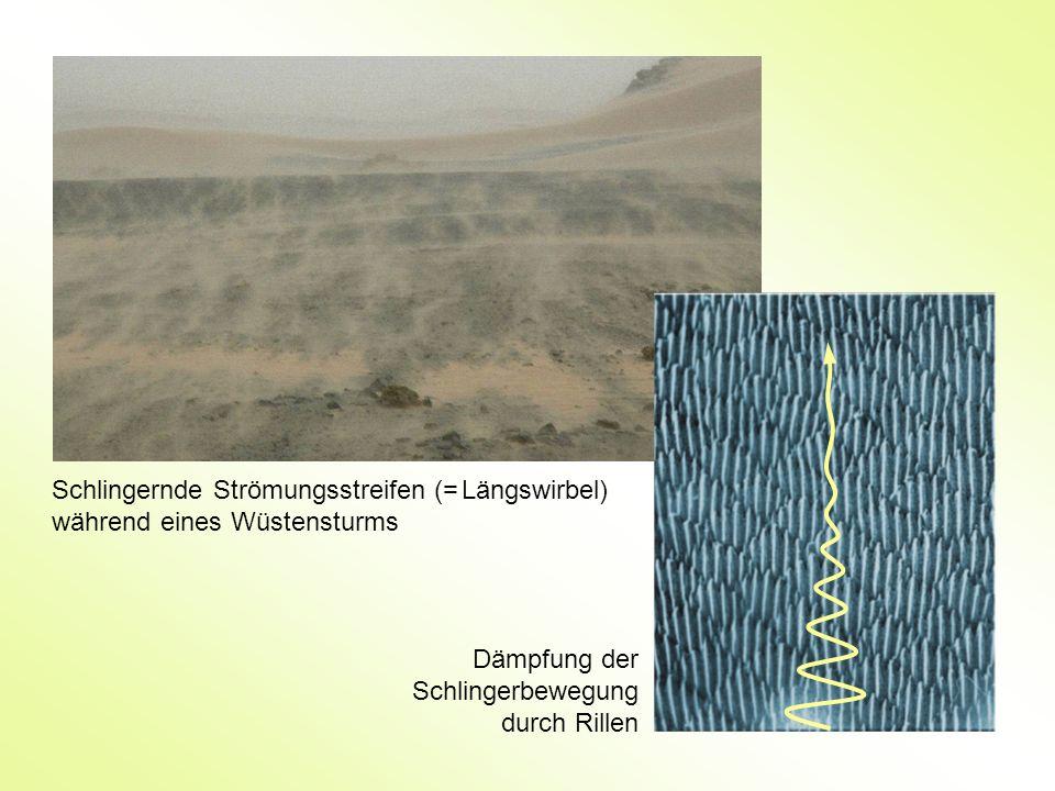 Schlingernde Strömungsstreifen (= Längswirbel) während eines Wüstensturms