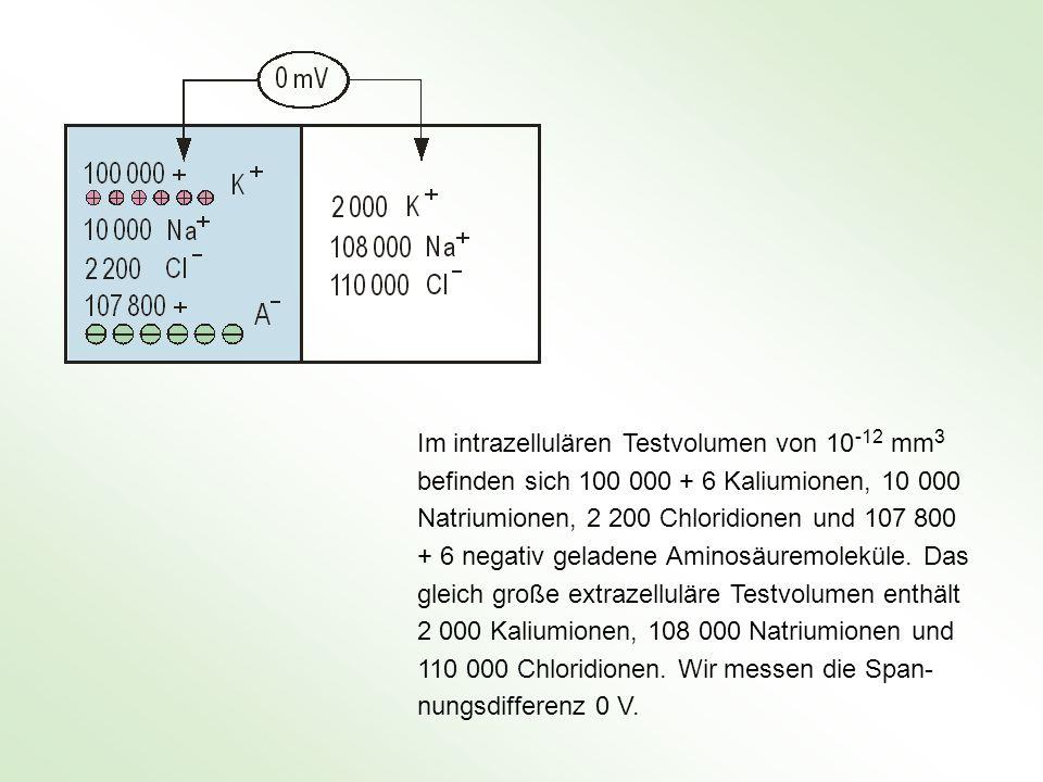 Im intrazellulären Testvolumen von 10 -12 mm3