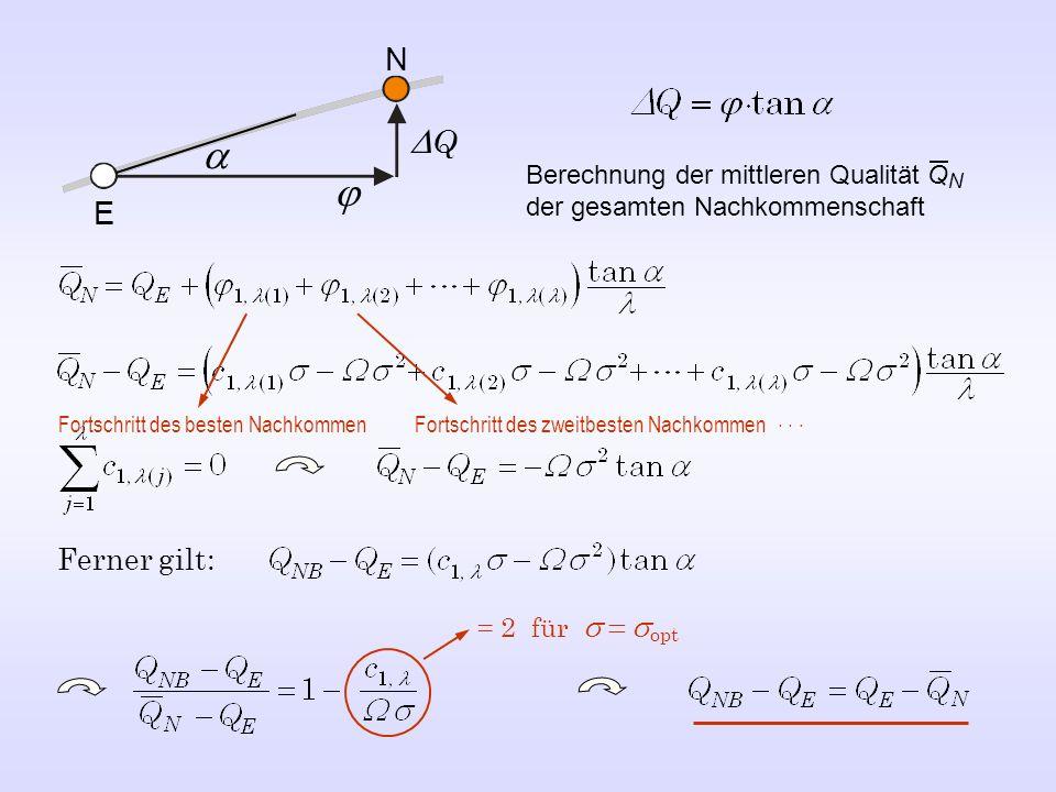 NDQ. a. Berechnung der mittleren Qualität QN der gesamten Nachkommenschaft. j. E. Fortschritt des besten Nachkommen.
