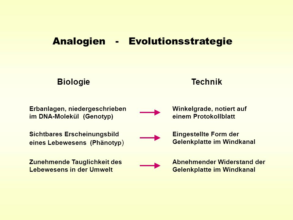 Analogien - Evolutionsstrategie