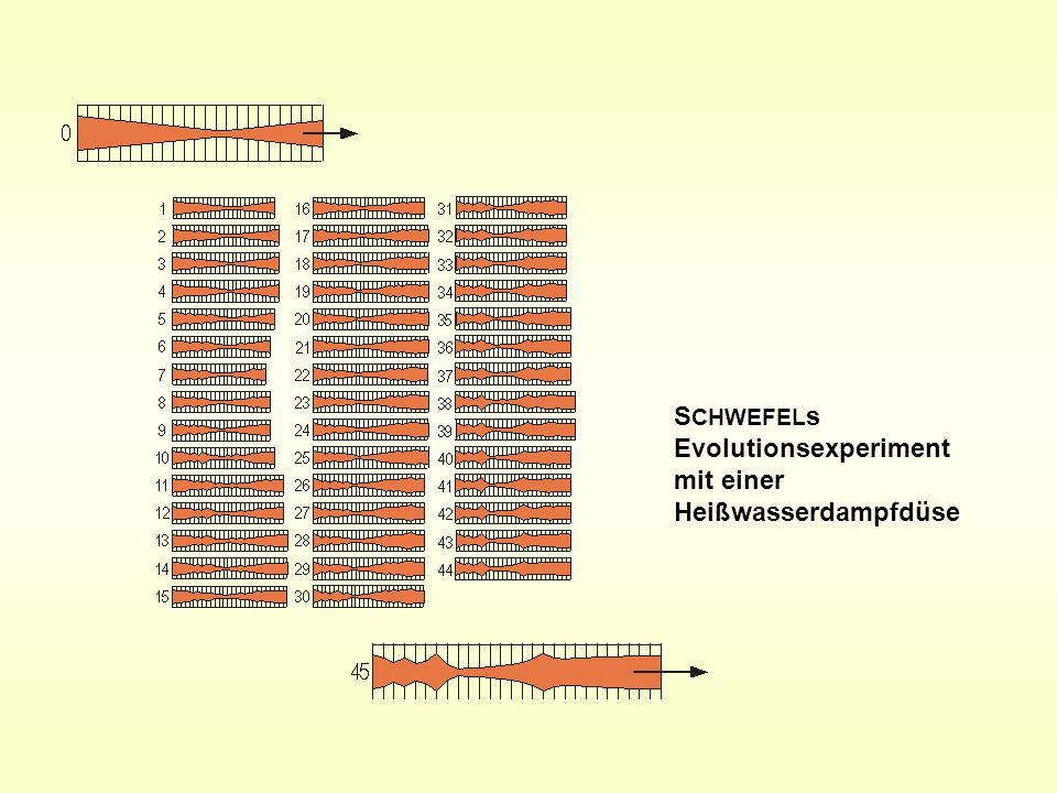 SCHWEFELs Evolutionsexperiment mit einer Heißwasserdampfdüse