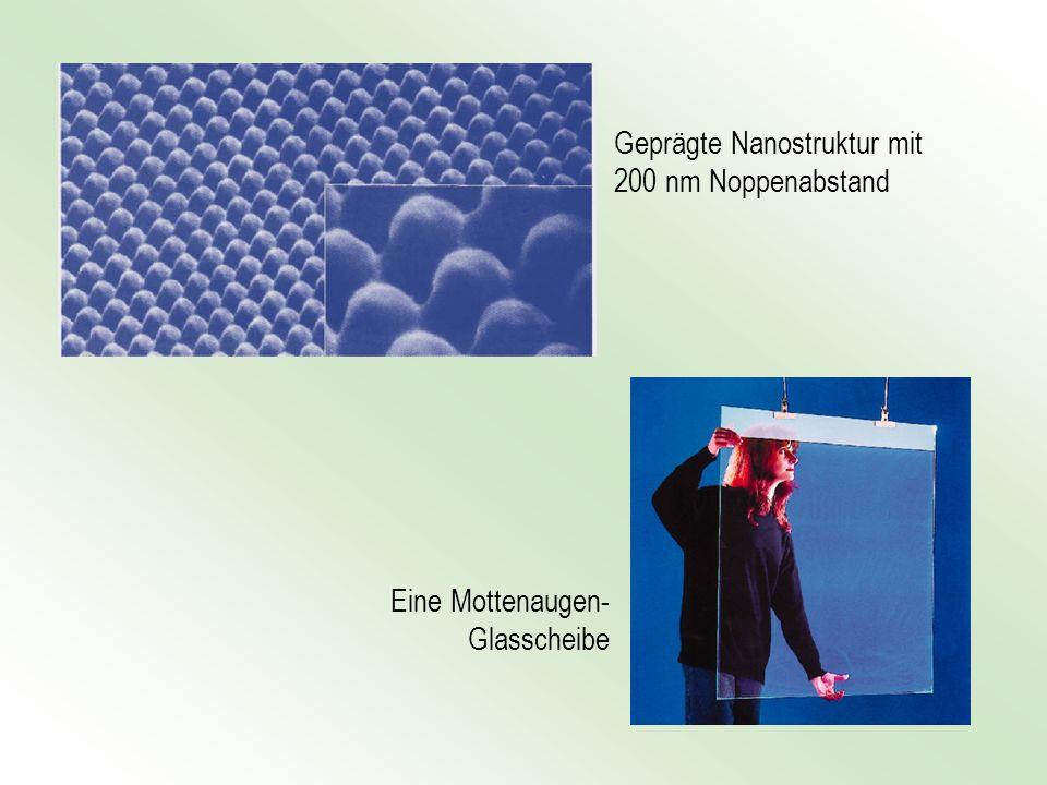 Geprägte Nanostruktur mit 200 nm Noppenabstand