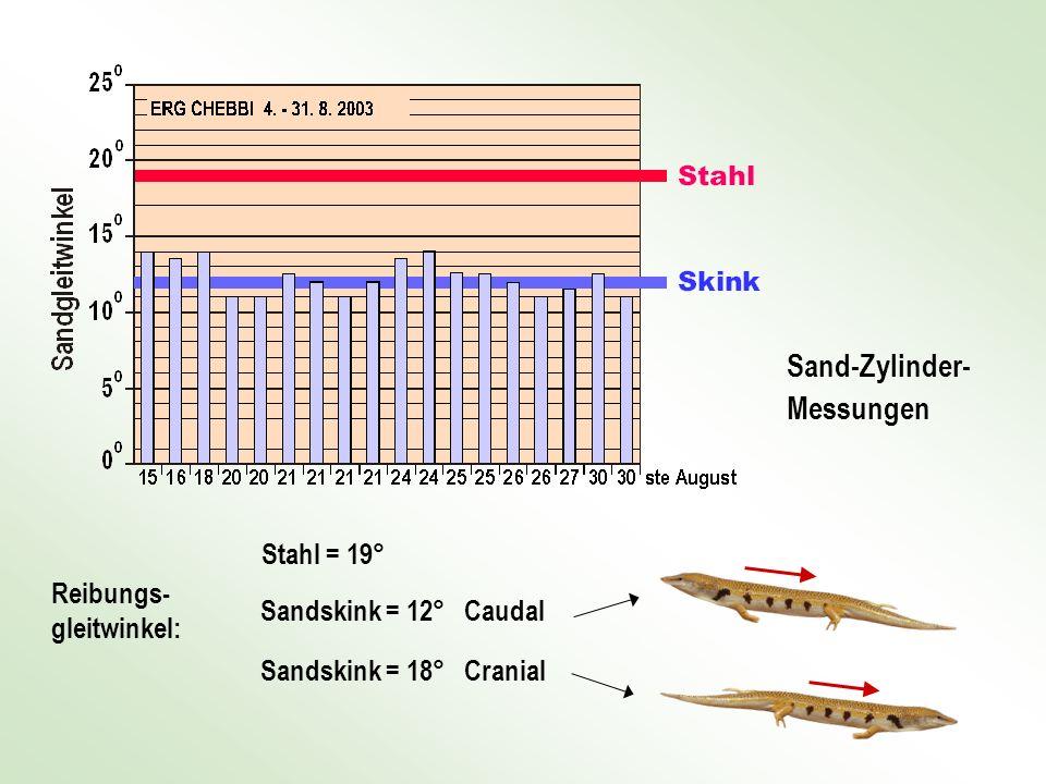 Sand-Zylinder- Messungen