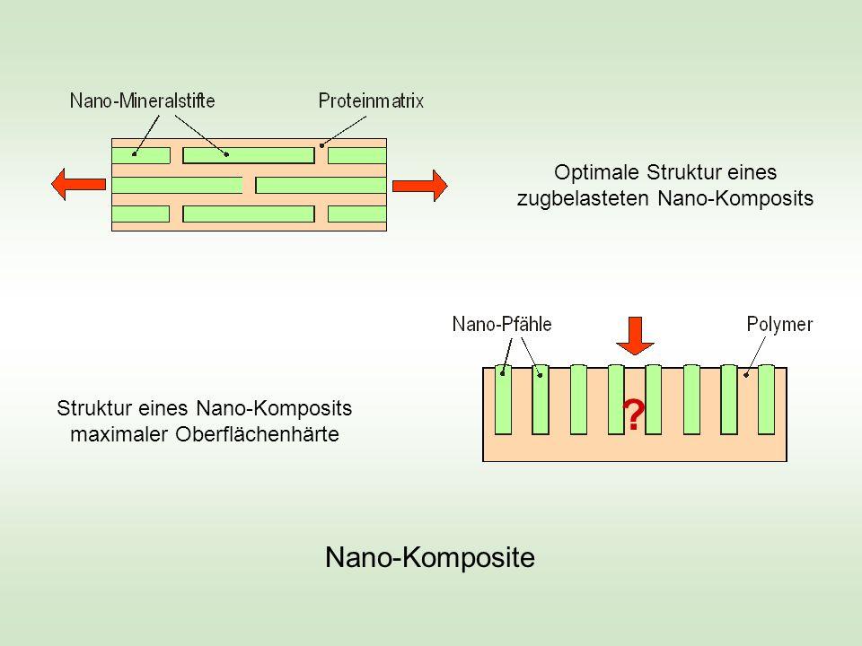 Nano-Komposite Optimale Struktur eines zugbelasteten Nano-Komposits