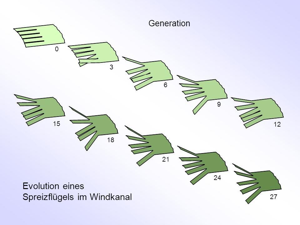 Evolution eines Spreizflügels im Windkanal