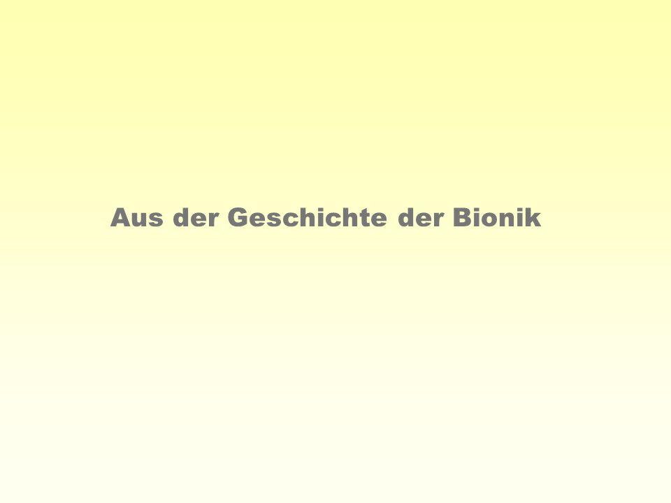 Aus der Geschichte der Bionik