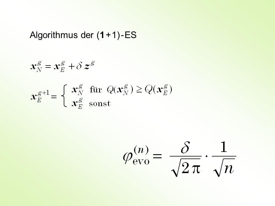 Algorithmus der (1 + 1) - ES