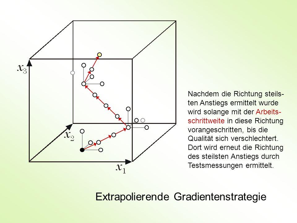 Extrapolierende Gradientenstrategie