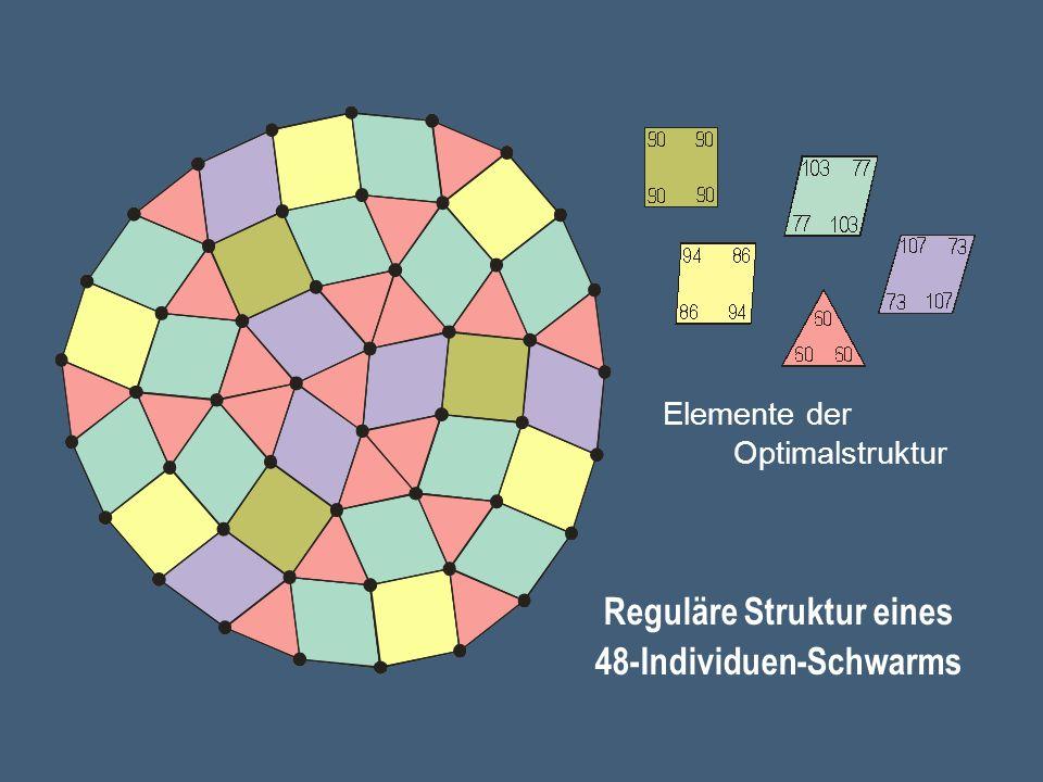 Reguläre Struktur eines 48-Individuen-Schwarms