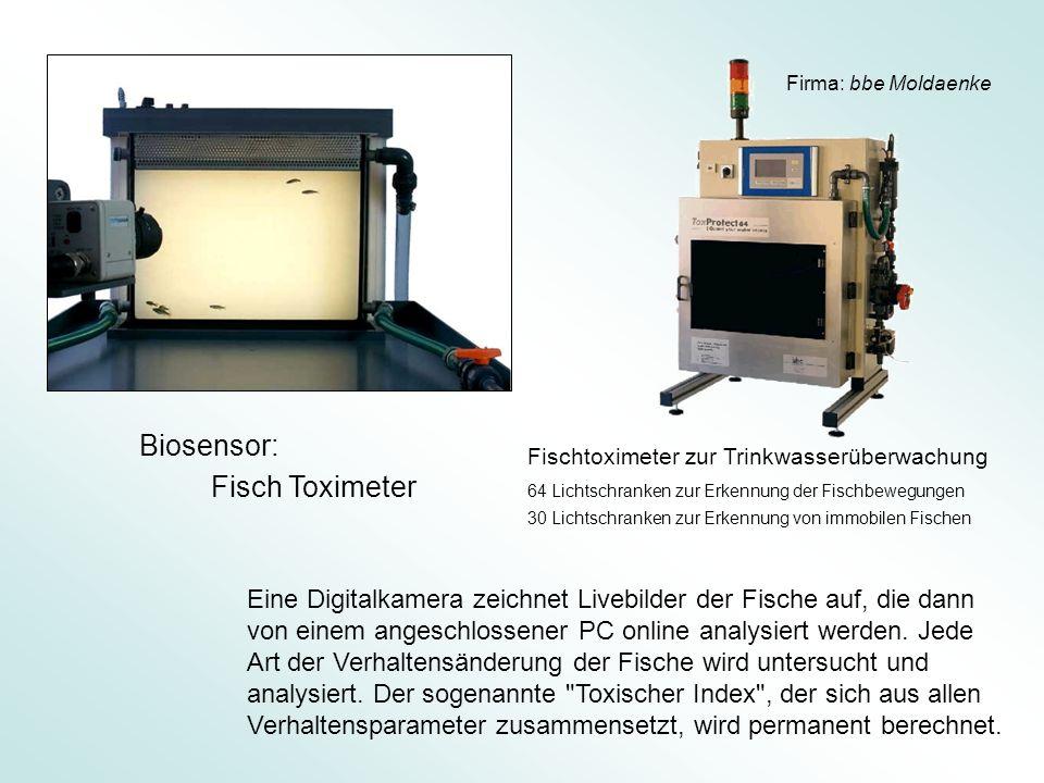 Biosensor: Fisch Toximeter
