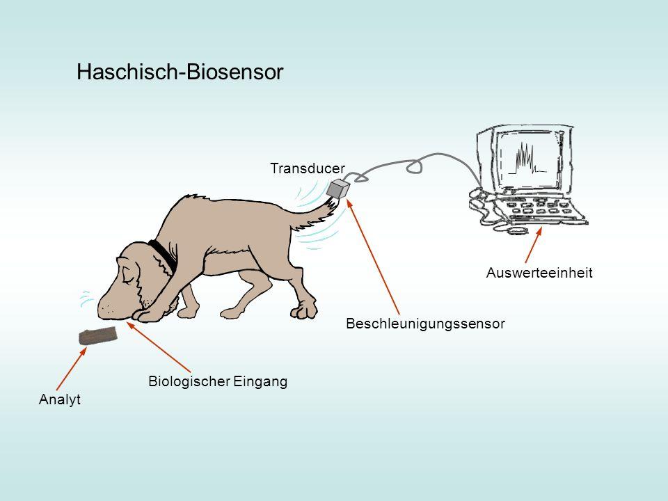 Haschisch-Biosensor Transducer Auswerteeinheit Beschleunigungssensor