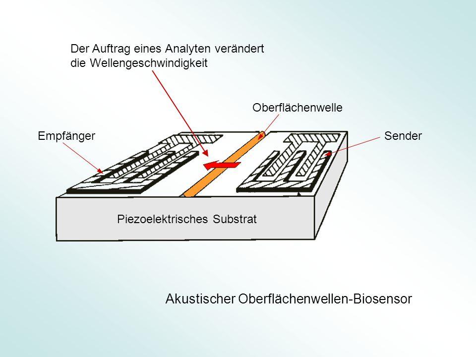 Akustischer Oberflächenwellen-Biosensor