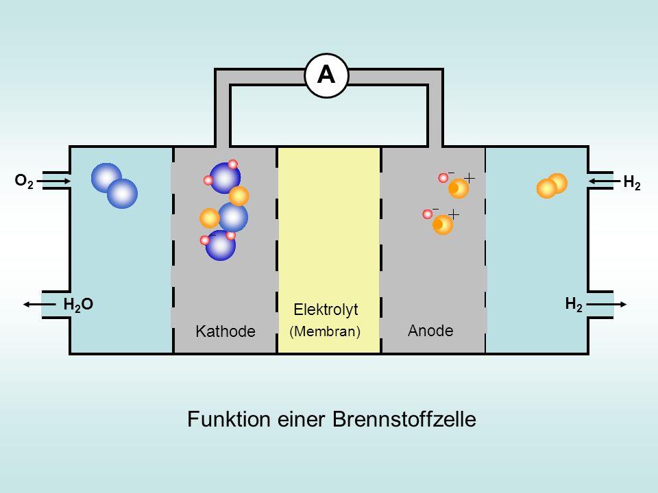 Funktion einer Brennstoffzelle