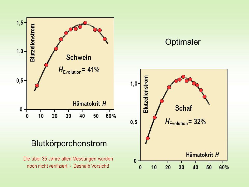 Optimaler Blutkörperchenstrom Schwein H = 41% Schaf H = 32% m o r s n